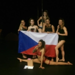pole dance show