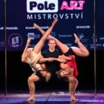 pole danc show
